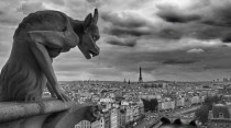 Gargoyle of Notre-DameParis France  Vyacheslav