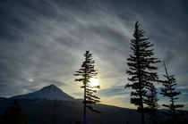 Halo Over Mt Hood OR