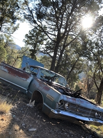 Mercury Monterey Coupe resting in peace on a mountaintop