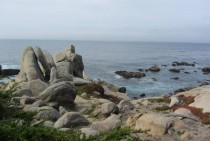 Mile Drive Carmel California