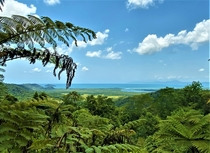 Mt Alexandra Lookout Queensland Where two world heritage sites meet the Daintree Rainforest and Great Barrier Reef