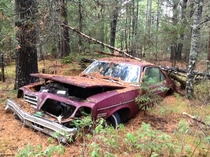 my nephew took a picture of an abandoned pontiac