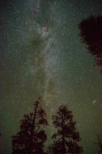 My photograph of the Milky Way guest starring Andromeda from Kings Canyon California