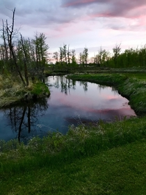 Norris Creek at sunset - central Alberta Canada