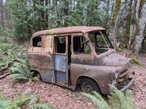 Old US Mail truck Found while on a run in Western Washington State