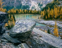 Opabin Plateau in Yoho National Park British