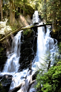 Ranger Falls at Mt Rainier National Park was a raging torrent of water yesterday