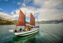 Sailing Away to Akaroa by Stuck in Customs