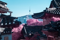 Seoul South Korea in Infrared