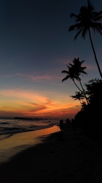 Sunset on the south shore of Sri Lanka
