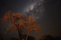 Taken about five days ago by our cooking fire in Chobe National Park Zimbabwe The stars are amazing there