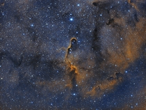 This is my first attempt at bi colour narrowband data processing after getting the Optolong L-Enhance filter recently Im super happy with the results The Elephants Trunk Nebula in Cepheus