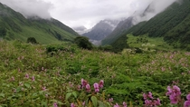Valley of Flowers India A UNESCO Biosphere Reserve