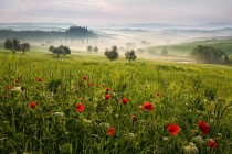 via 500px  Photo Tuscan spring 4 by Daniel