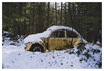 VW Beetle I stumbled across while snowshoeing in the woods