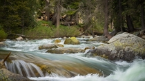 Walk along the rivers edge in Sequoia National Park