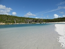whitsundays island x