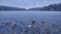 Winter is arriving Northern Lapland