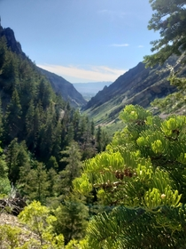 x I give you the summer in American Fork Canyon UT