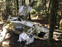 year old remnants of a plane crash in the Blue Ridge