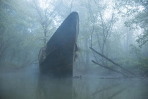 year old ship rotting in a Kentucky Creek OCx