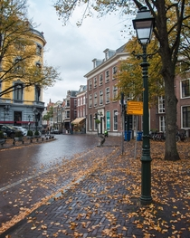 A beautiful autumn day in The Hague The Netherlands OC