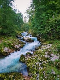 A beautiful morning in Vintgar Gorge Slovenia