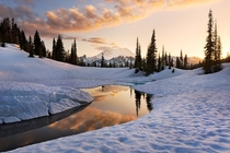 A beautiful reflection of Mt Rainier in the distance in the snows and frozen lakes of the Cascade Mountains Washington  by Stefan Hefele