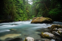 A beautiful river scene in the Olympic Mountains