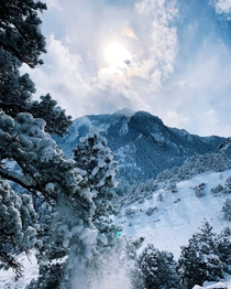 A beautiful snowy stroll in Boulder CO