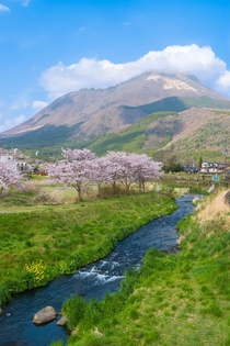 A beautiful spring time view from the small onsen town of Yufuin Japan