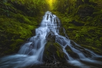 A beautiful staircase waterfall in Washington by Ryan Dyar