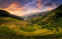 A beautiful terraced valley in Mu Cang Chai Yen Bai Vietnam