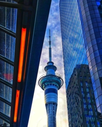 A beautiful view of Sky tower at sunset Auckland NZ