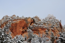 A blanket of snow covers the brilliant red peaks of Zion National Park Utah