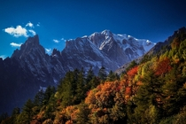 A blush of Autumn Mont Blanc France
