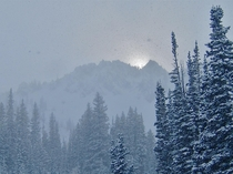 A brief cloud break during a major storm Wasatch powder skiing Little Cottonwood Canyon Utah    OC