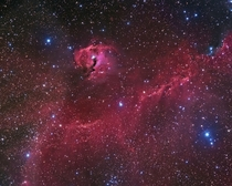 A broad expanse of glowing gas and dust presents a bird-like visage to astronomers from planet Earth suggesting its popular moniker - The Seagull Nebula This portrait of the cosmic bird covers a  degree wide swath across the plane of the Milky Way