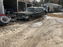 A  Cadillac hearse sitting in a junkyard is Georgia