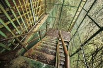 A caged in stairwell at an abandoned insane asylum