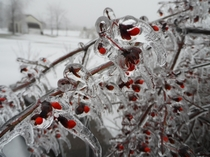 A Canadian ice storm last winter