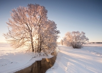 A chilly morning in Ostergotland Sweden  Photographed by Andreas Lf