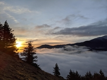 A Chilly Sunrise Halfway Through Dog Mountain Trail in Cook WA