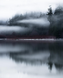 A classic moody forest reflection in North Cascades National Park