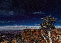 A clear star filled night sky Grand Canyon