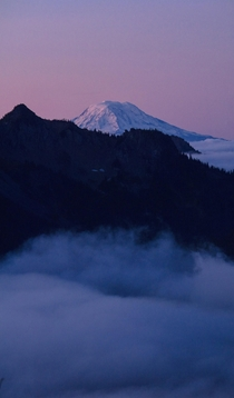 A cloud inversion at sunrise Mt Adams from Mt Rainier Natl Park