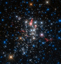 A cluster of stars named Westerlund  one of the most massive young star clusters known to reside in the Milky Way