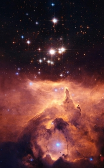 A Cluster of young Stars called Pismis