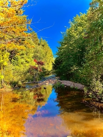 A creek on the North Noquemanon Trail near Marquette MI  x