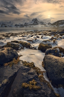 A delicate layer of ice in a glowy sunset - Lofoten Norway -
